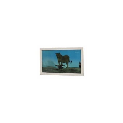 Телевизор AquaView POD32