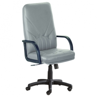Компьютерное кресло Новый стиль Manager