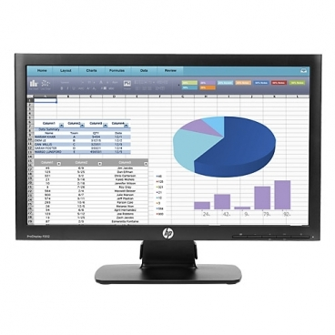 Монитор HP ProDisplay P202