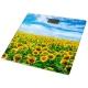 Весы Lumme LU-1328 sunflowers