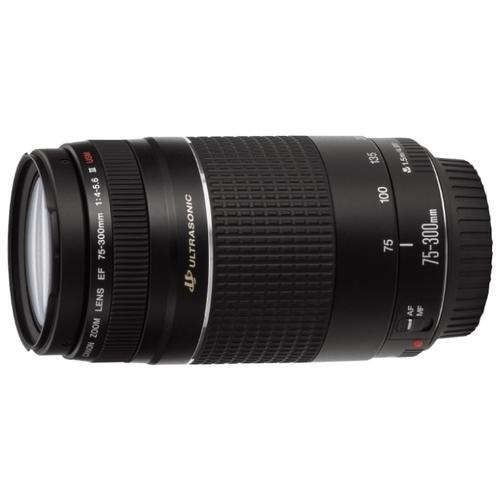 Объектив Canon EF 75-300mm f/4-5.6 USM