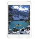 Планшет Apple iPad mini 4 64Gb Wi-Fi + Cellular