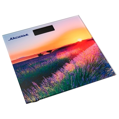 Весы Аксинья КС-6005