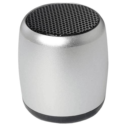 Портативная акустика ZDK 3W300
