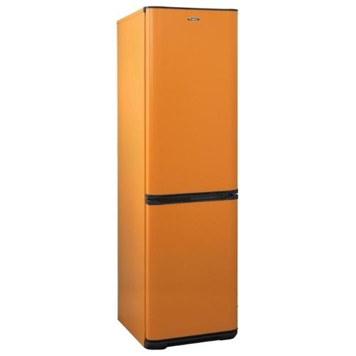 Холодильник Бирюса T380NF