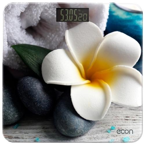 Весы ECON ECO-BS004