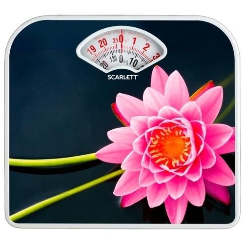 Весы Scarlett SC-BS33M043