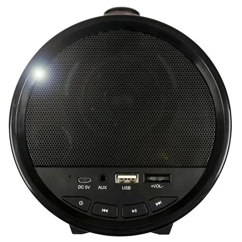 Портативная акустика Dialog AP-1000