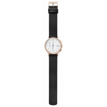 Часы SKAGEN Signatur (leather)
