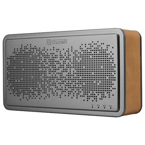 Портативная акустика iCarer BS-221