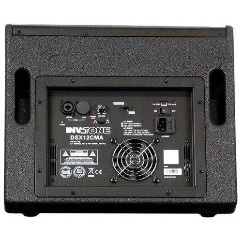 Акустическая система Invotone DSX12CMA