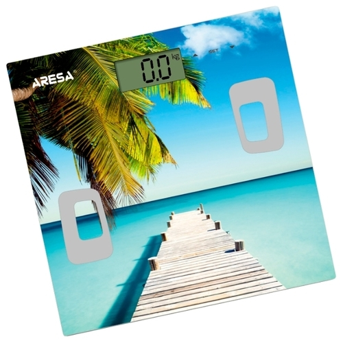 Весы ARESA SB-316
