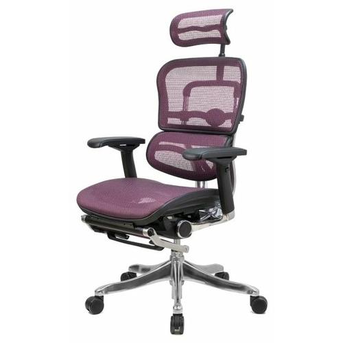 Компьютерное кресло Comfort Seating Ergohuman Plus Legrest офисное