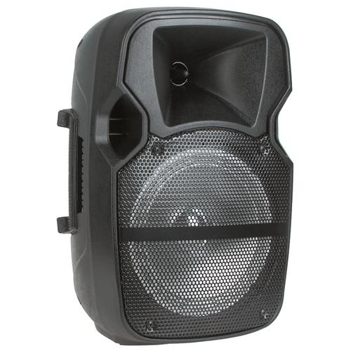 Портативная акустика Eltronic EL8-02CH