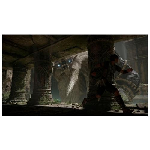 Shadow of the Colossus. В тени Колосса