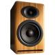 Акустическая система Audioengine P4