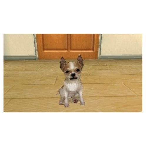 Petz: My Puppy Family