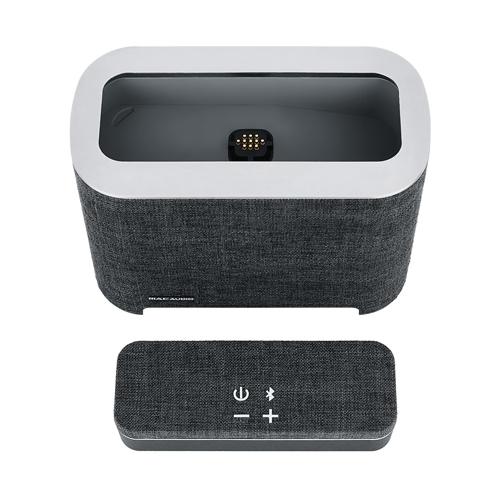Портативная акустика MAC AUDIO BT Elite 5000