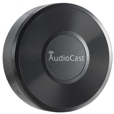 Сетевой аудиоплеер iEAST AudioCast