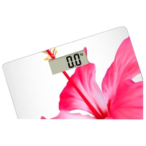Весы CENTEK CT-2412 Flower