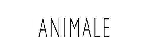 Cashback em Animale BR