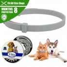 Pet Collar Anti Flea Ticks Mosquitoes Pet Dog Cat Tag Collar Outdoor Protective Adjustable PET Collar For Medium Large Dogs-in Collars from Home & Garden on AliExpress