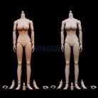 1:6 весы для девочек телесного цвета средства ухода за кожей большой бюст 12 ''фигурку игрушки с Etrax руки и средства ухода З купить на AliExpress