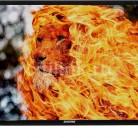 Купить LED телевизор DIGMA DM-LED32R201BT2 HD READY (720p) в интернет-магазине СИТИЛИНК, цена на LED телевизор DIGMA DM-LED32R201BT2 HD READY (720p) (489323) - Москва