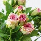 180.55 руб. 30% СКИДКА|2018 декоративные искусственные розы филиала шелк + пластик Флорес моделирование розовыми цветами для дома отель свадебные украшения Роза-in Искусственные и сухие цветы from Дом и сад on Aliexpress.com | Alibaba Group