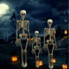416.25 руб. 38% СКИДКА|Хэллоуин реквизит скелет полный размер скелет череп руки реалистичные человеческого тела постижимая анатомическая модель вечерние украшения фестиваля-in Украшения своими руками для вечеринки from Дом и животные on Aliexpress.com | Alibaba Group
