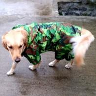 489.13 руб. 30% СКИДКА|Pet плащ для больших собак водонепроницаемая одежда для больших собак пальто для улицы дождевик для золотистый Лабрадор ретривер Хаски большие собаки-in Пальто и куртки для собак from Дом и сад on Aliexpress.com | Alibaba Group