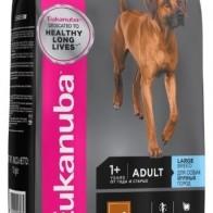 Отзывы и обзоры на Сухой корм для собак Eukanuba для здоровья кожи и шерсти, ягненок с рисом 12 кг (для крупных пород) - Маркетплейс Беру