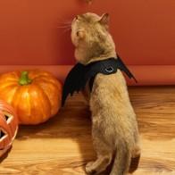 Костюм для собак с крыльями летучей мыши на Хэллоуин - Костюмы для животных
