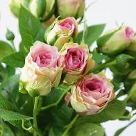 196.28 руб. 25% СКИДКА|2018 декоративные искусственные розы филиала шелк + пластик Флорес моделирование розовыми цветами для дома отель свадебные украшения Роза купить на AliExpress