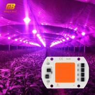 75.86 руб. 41% СКИДКА|Светодиодный Grow COB Чип Фито лампа полного спектра AC220V 110 V мощностью 10 Вт, 20 Вт, 30 Вт, 50 Вт, ручная сборка для комнатных растений рост рассады и цветок роста растений фитолампа-in Промышленные LED-лампы from Лампы и освещение on Aliexpress.com | Alibaba Group