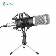 861.5 руб. 30% СКИДКА|BM 800 профессиональный конденсаторный микрофон в комплекте: микрофон для компьютера + ударное крепление + колпачок + кабель как микрофон BM 800 BM800-in Микрофоны from Бытовая электроника on Aliexpress.com | Alibaba Group