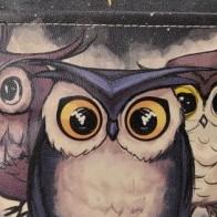 """Городской рюкзак """"Owls Family"""" - Веселые рюкзаки Dogo"""