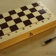 Настольная игра Шахматы средние - купить, правила, цена, отзывы, как играть | GaGaGames - магазин настольных игр в Санкт-Петербурге - Настольные игры для всей семьи