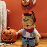Контрастный костюм для кошек на Хэллоуин - Костюмы для животных