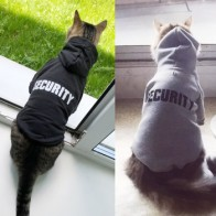 Одежда для кошек, пальто для кошек, куртка, толстовки для кошек, теплая одежда для животных, костюм для собак с кроликом, 20