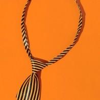 Кошачий галстук в полоску на Хэллоуин
