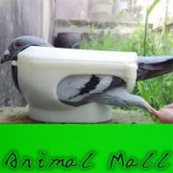 Новый держатель голубя колонмба одежда с птицами данный лекарственный прибор птица инструменты белый голубь оптом и в розницу