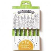 """Растущий карандаш """"Прованские травы"""", 6 шт. бренда Эйфорд - Все, что тебе сейчас нужно"""