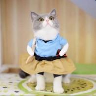 Забавная для кошек собак, костюм, Униформа, костюм, одежда для кошек, костюм Одежда для щенков, нарядный костюм, праздничная одежда для кошек,...