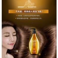 733.86 руб. 20% СКИДКА|Продукты для потери волос имбирь мягкий ремонт улучшает Гладкий питающий, увлажняющий контроль масла питает шампунь для волос уход за волосами-in Шампуни from Красота и здоровье on Aliexpress.com | Alibaba Group