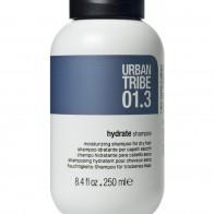 Увлажняющий шампунь 01.3 Shampoo Hydrate 250 мл., URBAN TRIBE