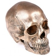 1 шт. Хэллоуин бронзовая модель черепа из полимера скульптура статуя ремесла украшение дома живопись медицинская модель