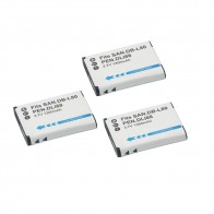 US $9.22 29% OFF|3Pcs D LI88 D LI88 DB L80 Rechargeable Batteries DB L80 For Sanyo VPC CG10 VPC CG20 For PENTAX VPC CG88 CG100 Camera Battery-in Digital Batteries from Consumer Electronics on Aliexpress.com | Alibaba Group