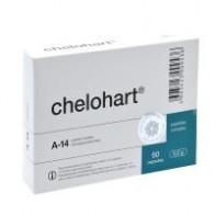 Челохарт — пептид для сердца (60 капсул) Купить в официальном интернет-магазине с доставкой по Москве и России