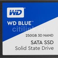 SSD накопитель WD Blue WDS250G2B0A 250Гб